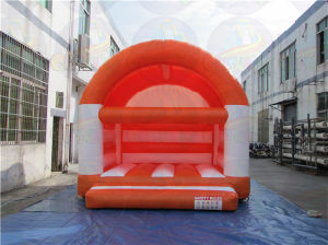 Cheap Inflatable Adult and Kids Bounce House pictures & photos