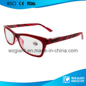Fashion Production Transition Tint Fancy Arm Colorful Zebra Reading Glasses pictures & photos
