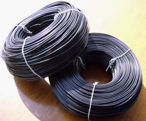 PVC Coated Rod Iron Wire with High Quality and Competitive Price pictures & photos