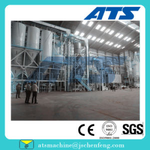 Reasonable Structure 30t/H House Feed Pellet Production Plant pictures & photos