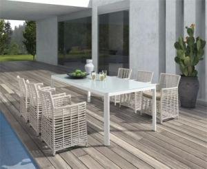 Leisure Morden Outdoor/Indoor Big Size Rattan Dining Table Set