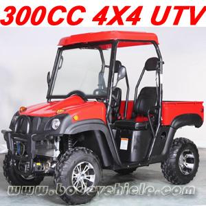 300CC 4X4 UTV (MC-150) pictures & photos