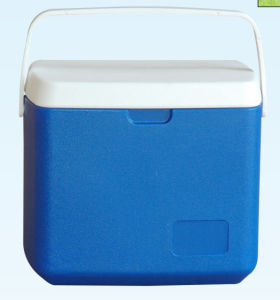 Cooler Box, Ice Box, 10L, Cooler Box pictures & photos