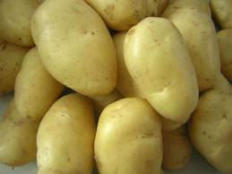 Shandong Potatoes