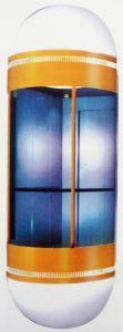 Small Villa Elevator (TZJ-450-JXW)