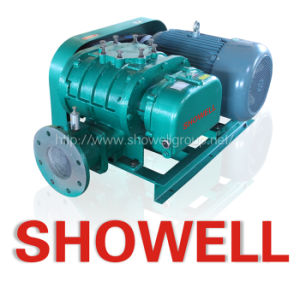 Waste Water Treatment Roots Rotary Blower (XLSR)