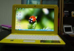 10.2 Inch Laptop (LX-83)