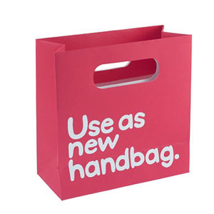 Fashion Paper Shopping Bag (FP4161) pictures & photos