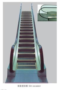 Escalator with 30 Degree 1000mm Step Width (XNFT-003) pictures & photos