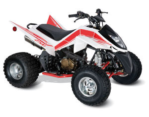 ATV SPORT 250CC (Kingmax 250S) pictures & photos