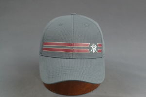 Polyester Mesh Fitted Cap with Rubber Printing on Front pictures & photos