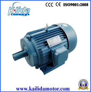China Three Phase Squirrel Cage Small Electric Motor