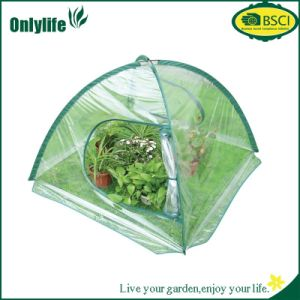 Onlylife PVC Outdoor Garden Flower Foldable Greenhouse for Keep Warm pictures & photos