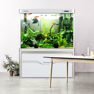 Custom Best-Selling Large Living Room Bottom Filter Eco Fish Tank pictures & photos