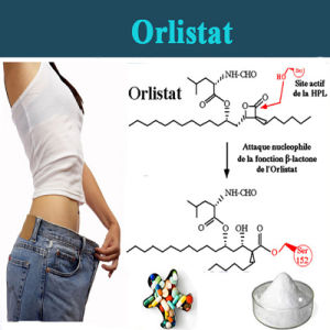 High Quality Powder Orlistat for Weight Loss Orlipastat pictures & photos
