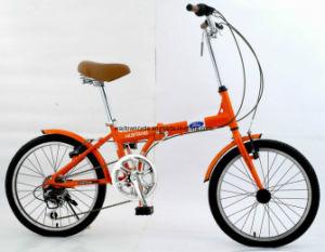 Folding Bike (WT-FOLD-2037) pictures & photos