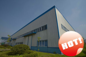 Long Span Steel Strucure Warehouse (LD-S-002) pictures & photos