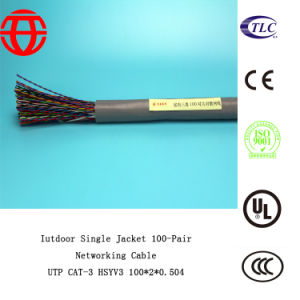 Indoor Cat3 Single Jacket 100-Pair Networking Ethernet Cable pictures & photos