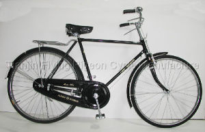 Durable Traditional Bike Classic Bicycle (TR-006) pictures & photos