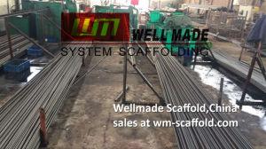 Concrete Shuttering Tie Bar Construction Formwork Tie Rod pictures & photos