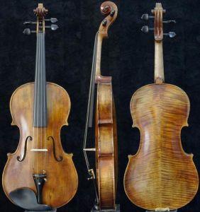 Antique Viola (SV-1331)