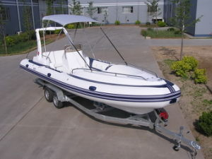 Hypalon Rib Boat 7.3m --Hot pictures & photos