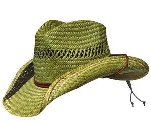 Cowboy Hat(VL-1004) pictures & photos