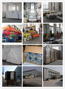 PE Protective Tape for Aluminium Profile (H75BW) pictures & photos
