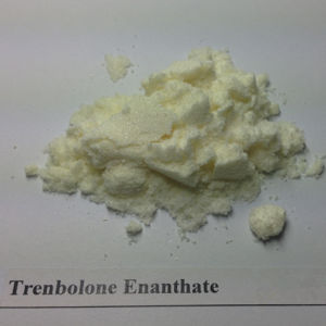 Muscle Enhance Steroid Powder Testosterone Acetate Raw Material pictures & photos