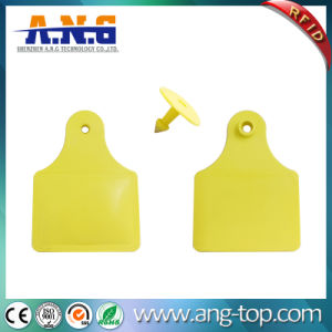 Cattle Sheep Livestock RFID UHF Animal Ear Tag pictures & photos