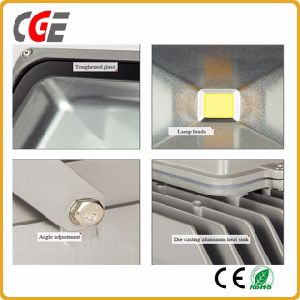 High Quality Factory Prices IP67 10W 20W 30W 50W RGB LED Light LED Outdoor Lights Flood Lighting/ pictures & photos