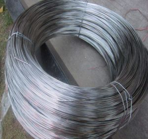 201 304 316 Stainless Steel Wire Rod pictures & photos