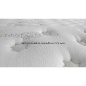 Hot Sale Shenzhen Sponge Wholesale Used Mattress pictures & photos