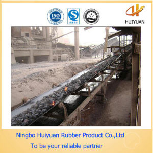 Burning Resistant Ep Conveyor Belt (250degree) pictures & photos