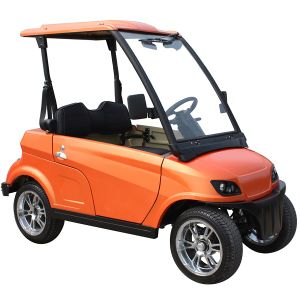 Hot Export China Manufacturer 2 Seater Small Electric Vehicle (DG-LSV2) pictures & photos
