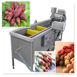 High Efficiency Brush Type Vegetable Fruit Cleaning Equipment pictures & photos