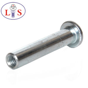 Hot Selling Fastener Non-Standard Metal Solid Rivet pictures & photos