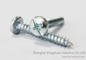 Pan Head Self-Tapping Screw Manufacturer pictures & photos