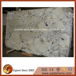 Good Sale Delicatus Cream Granite Big Slab pictures & photos