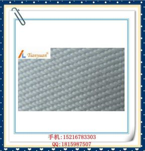 Polyester PE Liquid Filter Cloth pictures & photos