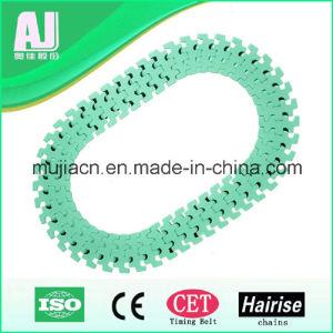 Bottle Industry 830t Slat Top Chain (Hairise830T-k325) pictures & photos