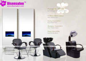 Styling Chair, Salon Chair, Barber Chair, Hairdressing Chair (Package NP1108) pictures & photos