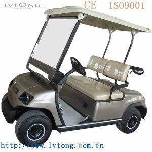 Lvtong Brand 2 Seats Electric Car pictures & photos