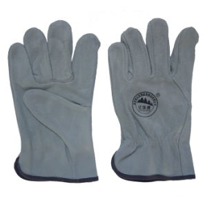 10 Inch Leather Working Safety Driving Gloves for Drivers pictures & photos