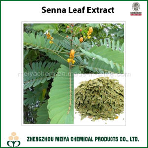 High Quality Senna Leaf / Cassia Angustifolia Powder Extract with Sennosides pictures & photos