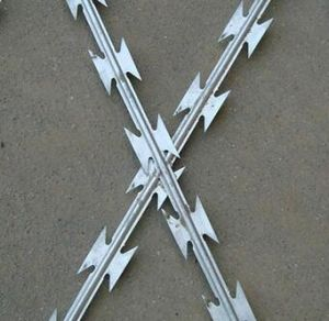 China High Quality Galvanized Low Price Concertina Razor Barbed Wire pictures & photos