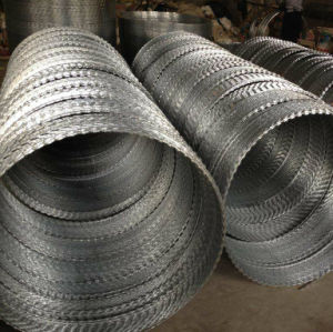 Hot-Dipped Galvanized Razor Blade Wire pictures & photos
