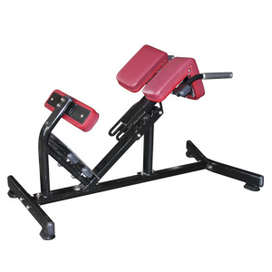 Fitness Equipment Hyperextension /Roman Chair for Back Exercise (FW-1006) pictures & photos