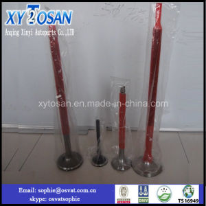 Intake/ Exhaust Valve for Russian Marine Engine pictures & photos