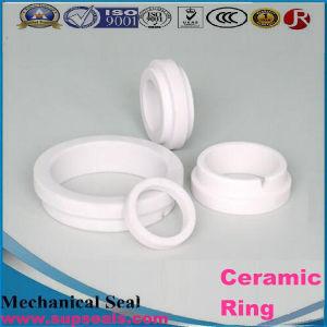 Alumina Cordierite Ceramic Ring pictures & photos